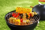 colorful grilling v_ small