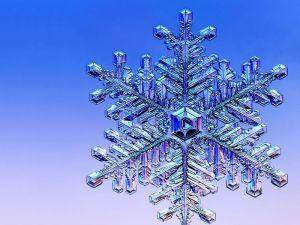 snowflake-1152